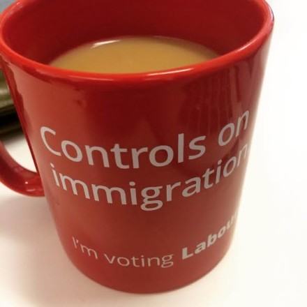 controls on immigration mug
