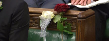 Jo Cox white red rose