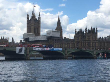 momentum flotilla