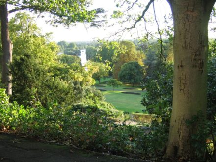 view_from_richmond_hill_surrey_01